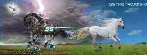 5G The Trojan Horse facebook